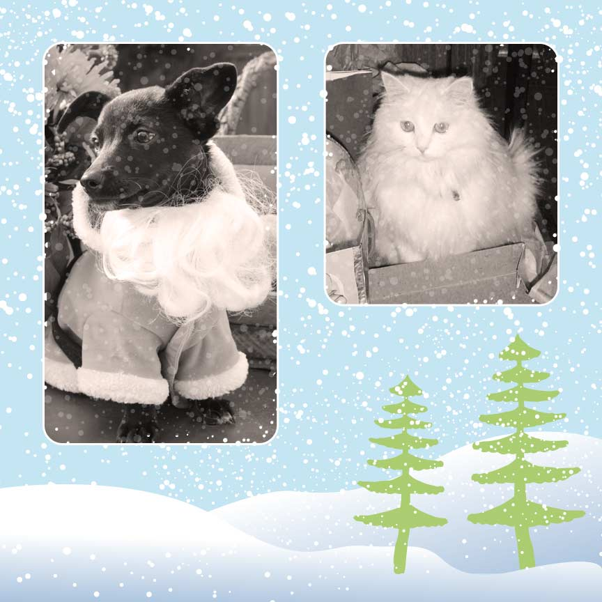Winter Scrapbook Layout for Christmas Scrapbooking